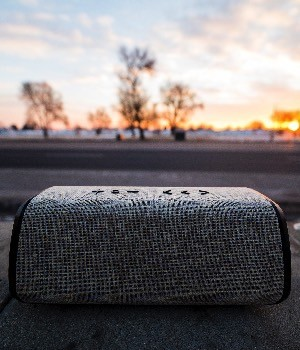 U.S. Wireless Speaker market research report