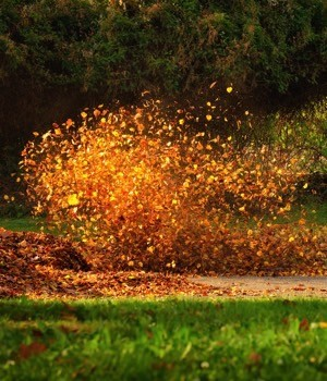 Leaf blower market research report
