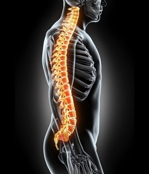Spinal Implants Market Research Report