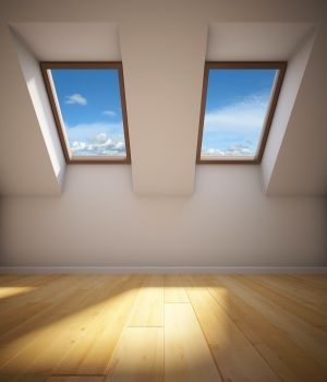 skylight market research report