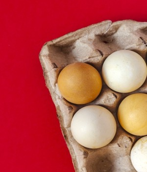 Egg packaging market research report