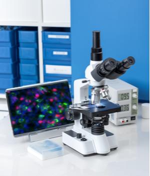 Digital Pathology Market Research Report