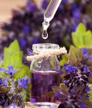 U.S. Essential Oils Market Research Report