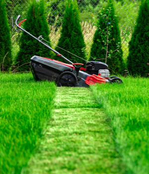 Europe Electric Lawn Mower Market Research Report 2025