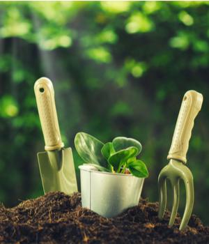 Garden Hand Tools Market Research Report