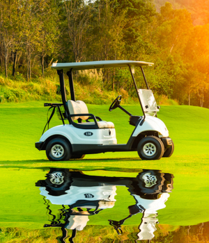 Golf Cart and Buggy Market Research Report