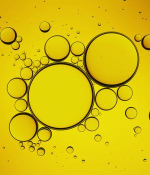 Oleochemicals Market Research Report