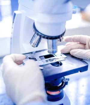 Rapid Diagnostics Market Research Report | Rapid Test Kit Industry Analysis 2025